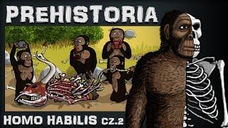 Homo Habilis - Przedsiębiorczy Padlinożerca - Prehistoria - Odc.4 - Historia na Szybko