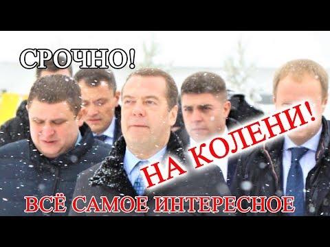 Пенсионерка встала на колени перед Медведевым