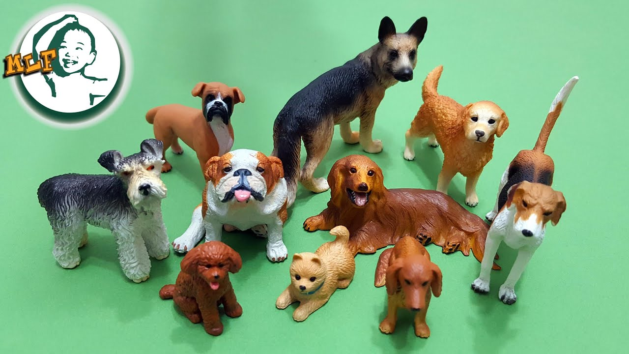 Learn 10 most popular dog breeds for kids with TOMY pet animals