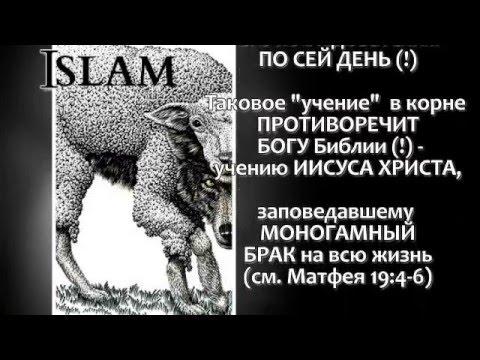 Исламское государство — Википедия