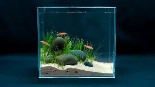 Make a fish tank mini aquarium