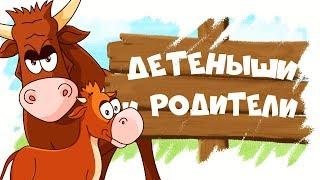 Download Домашние животные и их детеныши! Развивающие мультики для детей! Mp3 and Videos