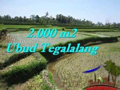 Affordable Bali PROPERTY LAND IN Ubud FOR SALE TJUB529