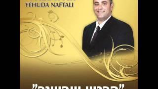 יהודה נפתלי- מראה כהן