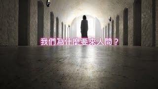 【透過催眠探索生命真相 III 】5.我們為什麼要來人間? 劉心陽 醫師 (CC中文字幕)