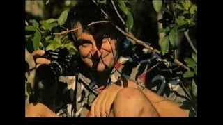 Television Archive: Omnibus Douglas Adams Tribute Documentary 2001