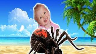Живой Паук . Интерактивная игрушка Wild Pets Супер веселая игра с детьми.