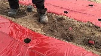 Отглеждане на ранен домат под алуминиева мрежа в полиетиленов тунел