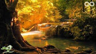 Endless • Relaxing Zen Music for Yoga, Meditation, Mindfulness & Sleep
