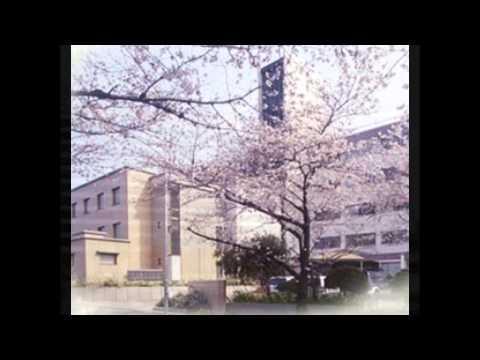 Nagoya College