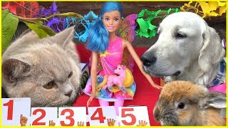 Барби Фея УЧИМ ЦИФРЫ Barbie Развивающий Мультик с игрушками для малышей Учимся считать от 1 до 5