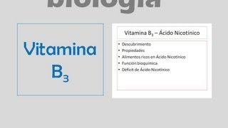Vitamina PP - Vitamina B3