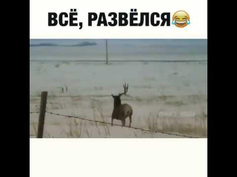 Читать онлайн - Иванов Алексей Викторович. Географ глобус