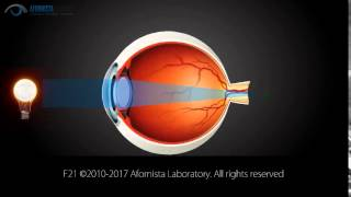 Near Vision in Glasses Explained. How Eyewear Helps Improve Near Vision.