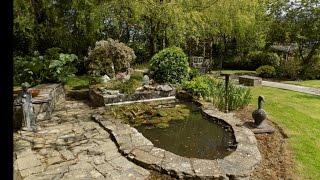 A tour around my garden, Waterford, Ireland May 2015