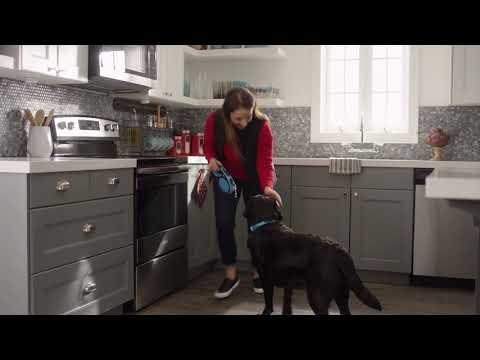 Amana® Dishwasher Features