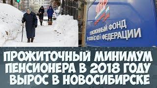 Прожиточный минимум пенсионера в 2018 году вырастет в Новосибирске