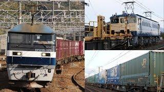 2018年1月12、13日貨物列車撮影記 ~寒空の下を走る貨物列車とロンチキ~