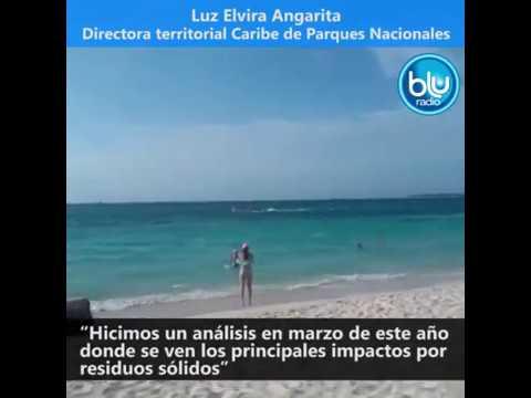 S.O.S AMBIENTAL: Crisis en Cartagena y Barú | Blu Radio