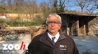 Videobotschaft von Zoo-Direktor Dr. Alex Rübel