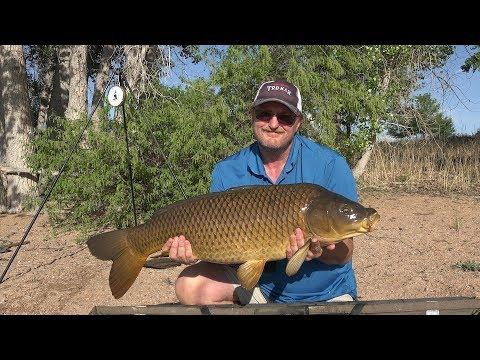 CarpQuest S6E4 - BIG Carp Fishing At Chatfield Reservoir
