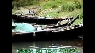 PESCA NO RIO TEJO JUNTO Á BARRAGEM DE BELVER ENGUIAS VIVAS
