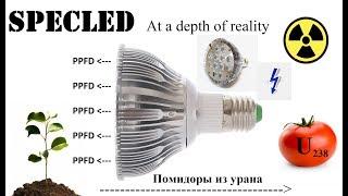 Светодиодная (LED) фитолампа для растений. Цоколь Е27. 660нм. Обзор