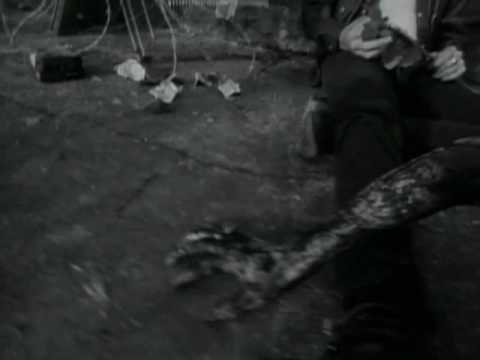 Skinny Puppy - Stairs and Flowers [Official Music Video]