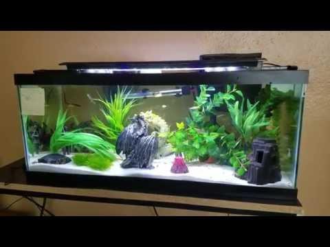 freshwater led aquarium lighting use install selection guide 2019