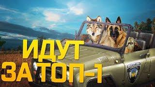 Playerunknown's Battlegrounds   ОНИ ЗАБЫЛИ СОБАК В МАШИНЕ!? БОЕВЫЕ ПСЫ ИДУТ ЗА ТОП 1!!
