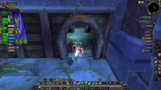 World of Warcraft - Survival Hunter PVP - Warsong Gulch - Random Battlegrounds - Horde