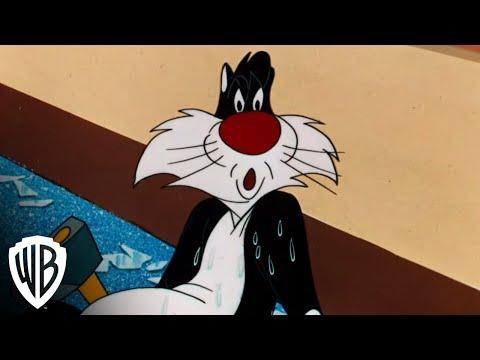 "Looney Tunes Super Stars: Sylvester & Hippety Hopper - ""Hop Look Listen"" - Wrong"