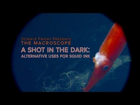 A Shot In The Dark: Alternative Uses For Squid Ink