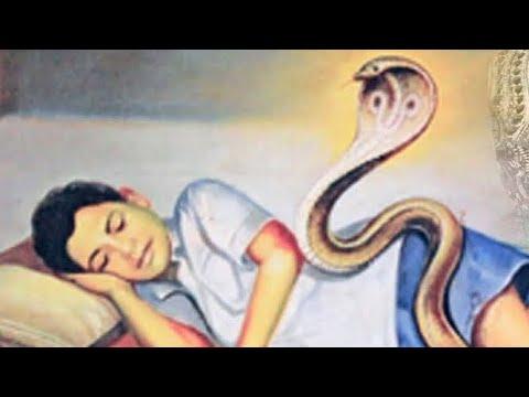 ஆன்மீக-குரு-பங்காரு-அடிகளாரின்-கதை- -biography-of-bangaru-adigalar-amma