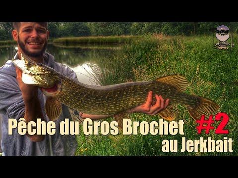 Pêche Du Gros Brochet Au Jerkbait #2  GoPro HD