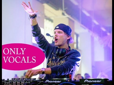 Avicii - Hey Brother (Only Vocals)