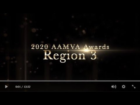 2020 AAMVA Awards - Region 3