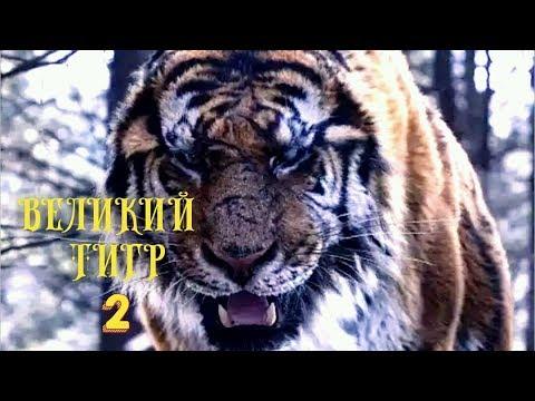 Великий тигр 2