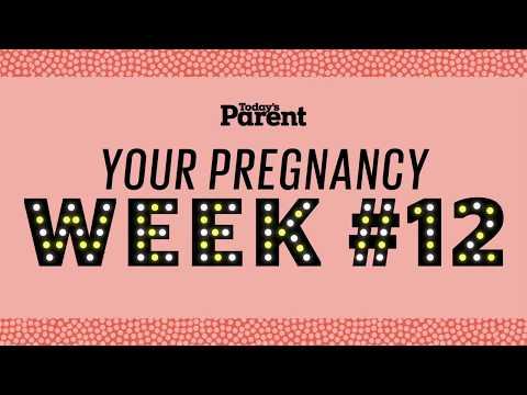 Your pregnancy: 12 weeks