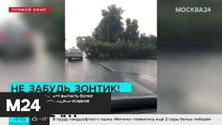 Более половины месячной нормы осадков может выпасть в Москве - Москва 24