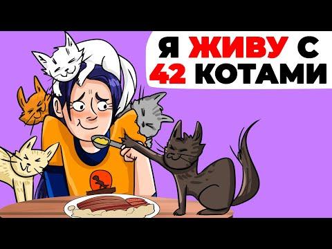Я живу с 42 котами | Анимированная история про одиночество