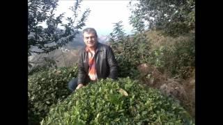 Lüzum Kalmadı-Aşkını istedim senden verme lüzum kalmadı 2017 Video