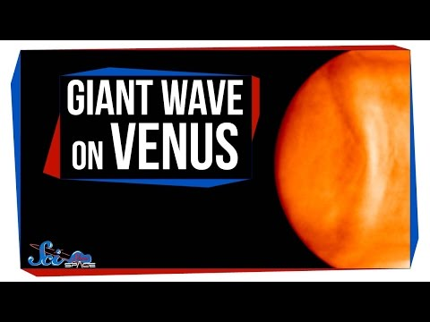 The Giant Wave on Venus