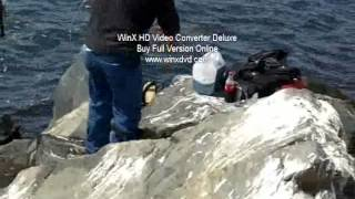 Look at ISO anglers tournament in California, dana point, rarity old video Mar242012