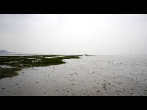Timelapse over the Deep Bay Mudflats