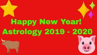 Happy New Year The Astrology of 2019 2020