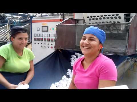 Video Fabrica Produccion Productos Desechables
