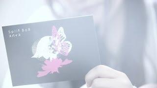 Split BoB・New Single「スパイス」 1. スパイス 2. 幻想の中で 3. 少女...
