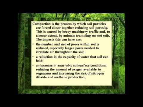 Unit 2- Sea Level Rise; Lesson 12- Salinization of Agricultural Soil