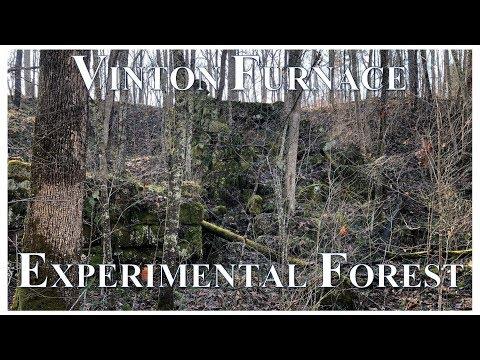 Vinton Furnace Experimental Forest 2019